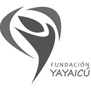 Yayaicu2